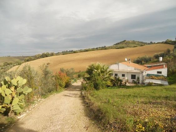 Country house with land. Close to the Adriatic coast.