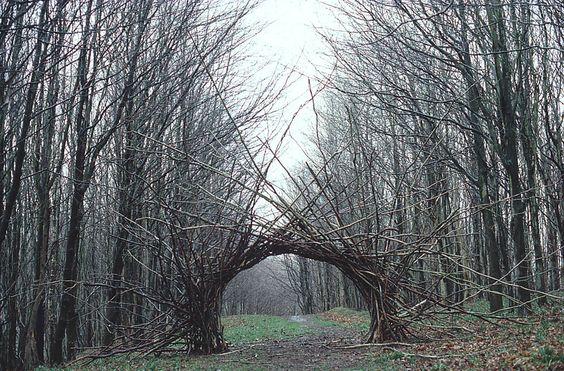 Andy Goldsworthy, Environmental Sculptor + Nature Artist - wave avenue