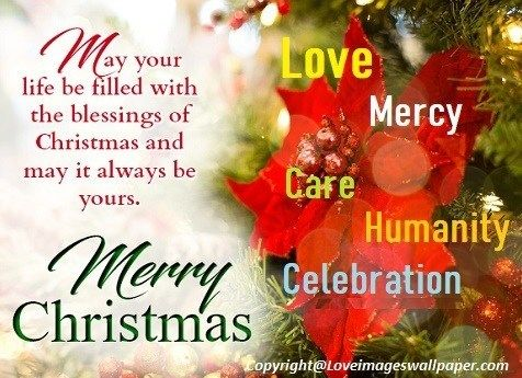 Merry Christmas Wishes Text Greetings 2019 Love Images Wallpaper Merry Christmas Wishes Text Merry Christmas Wishes Merry Christmas Text