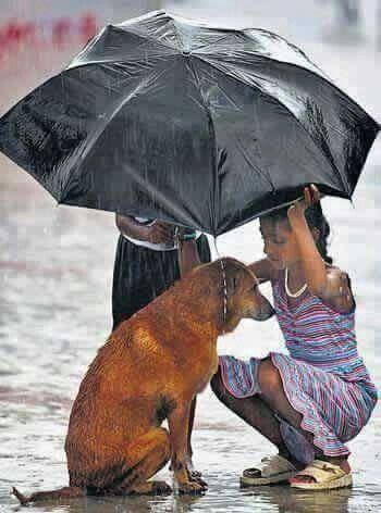 """""""As mãos que ajudam são mais sagradas.  Ter  atitude é tudo,são as mãos protegem.  Se cada um de nós fizer a sua parte, acredito que seria mais fácil 😘"""""""