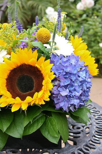 WEDDING FLOWERS: sunflowers, purple hydrangea, gerbera daisies ...