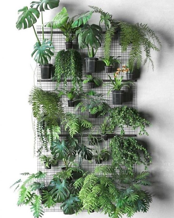 Mur Végétal en mode DIY
