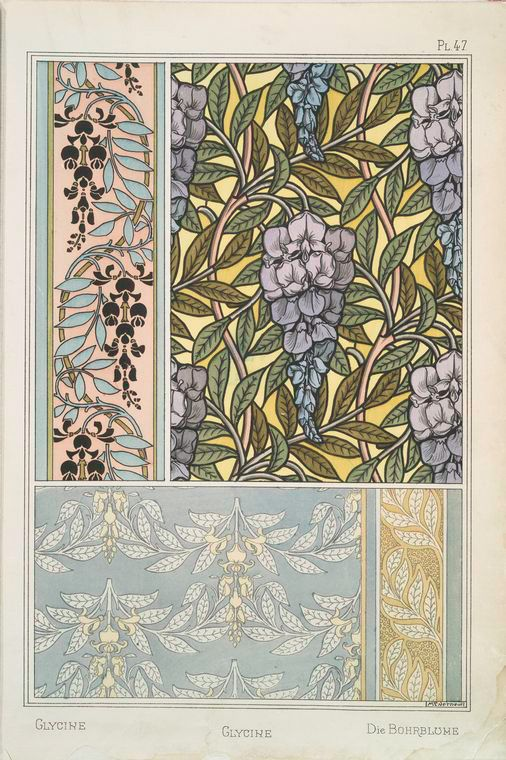 Glycine Creator(s): Grasset, Eugène, 1841-1917 -- Compiler  Verneuil, M. P. (Maurice Pillard), 1869- -- Artist: