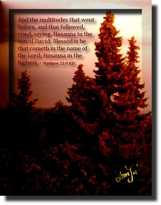 JESUS CHRISTUS, GOTTES WORT IN GOTTES WELT: Psalm 28:7 und Lukas 1:46-47