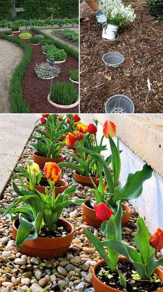 23 Idee di giardinaggio follemente intelligenti a basso budget