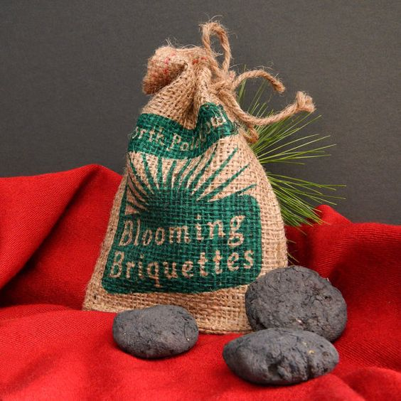 Naughty or Nice Blooming Briquettes Lump of North Pole Coal Gag Gift Stocking Stuffer Seed Bombs with Wildflower Mix for Guerrilla Gardening