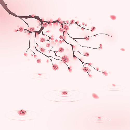 Cherry Blossom Shower Screener™