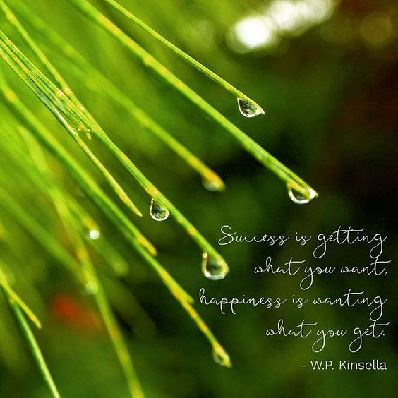 Success is getting what you want. Happiness is wanting what you get. -W.P. Kinsella #quote #quoteoftheday #qotd #wpkinsella #happiness