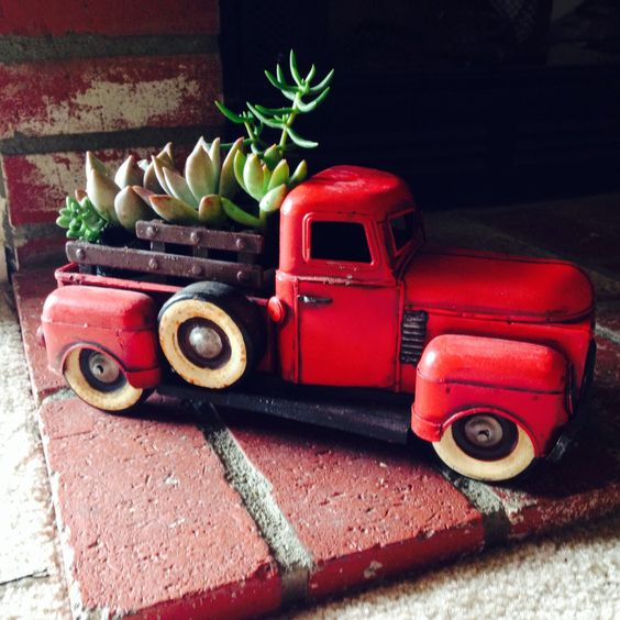 Succulents in antique toy truck.