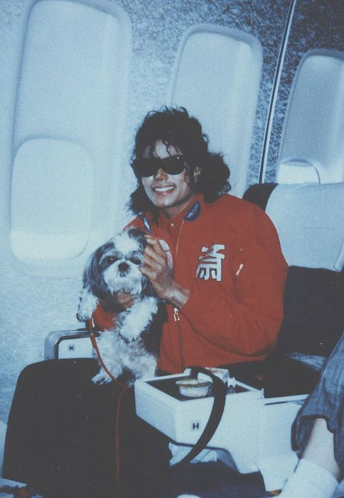 Michael Jackson with puppy-wow another pic of him with a dog!! Wonder y he said Liz's puppy was scary. . . (Lol is it scary)