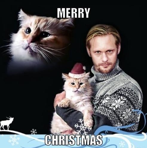 Merry Christmas Funny Christmas Meme Christmas Memes Funny Christmas Memes Funny Christmas Cards