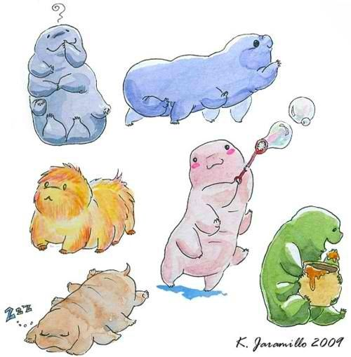 Tardigrade, Bears and Water on Pinterest Water Bear Size Comparison