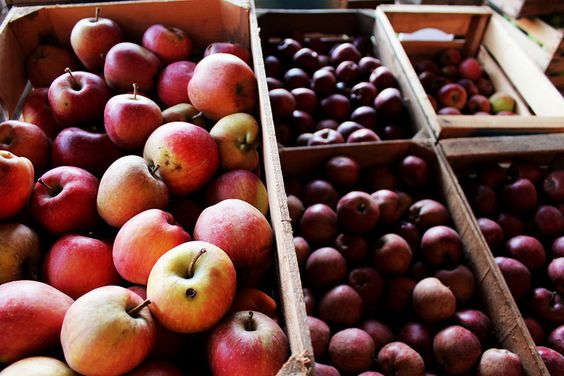 red apples by Cascina Danesa, via Flickr