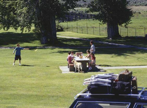 Viajes-en-familia-consejos-para-un-picnic-inolvidable-2.jpg