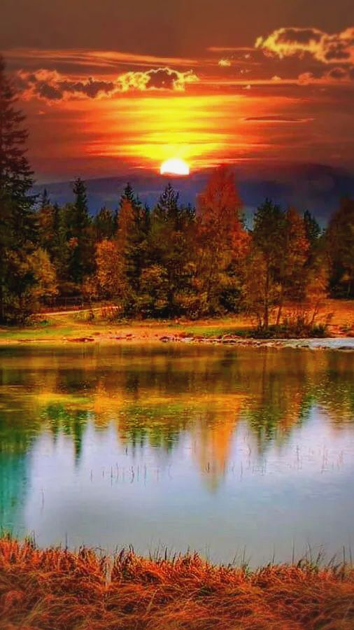 Photo Plus Google Com Beautiful Landscapes Nature Photography Nature Pictures