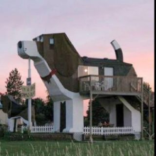 Dog Whisperer house - my dream home! And it's a beagle too!