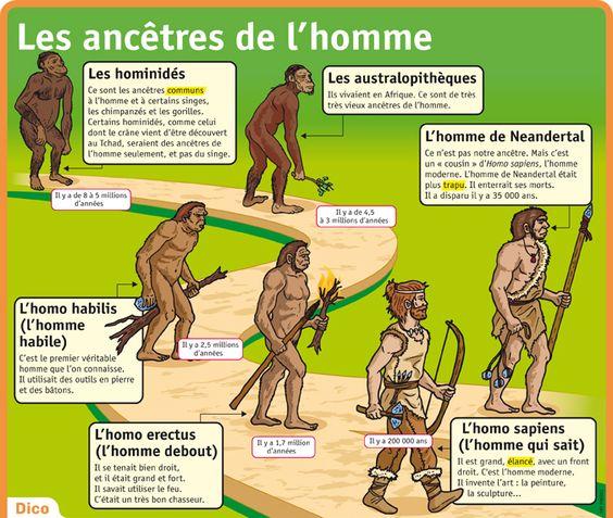 Poster sur les ancêtres de l'homme - PDF à imprimer