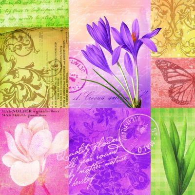 Ambiente,  Flowers - crocus,  Flowers - other,  Spring,  lunchnapkins,  crocus