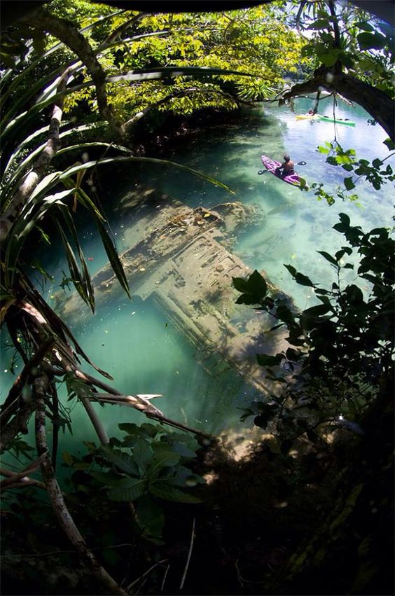 A Japanese warplane Second World War lies wrecked in shallow water off Guam. Photo by Tony Cherbas