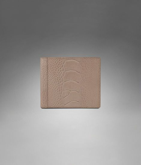 YSL Paris Wallet in Taupe Ostrich Skin