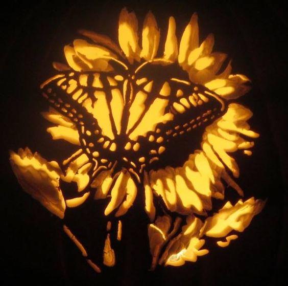 Swallowtail on sunflowers