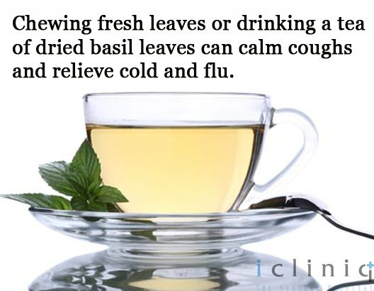 Chewing fresh leaves or drinking a #tea of dried basil leaves can calm coughs and relieve cold and flu.