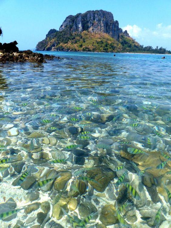 Tup Island - Chicken Island - Railey - Koh Phi Phi - Krabi : îles paradisiaques en #Thailande mais également belles découvertes sur le continent (Tiger Cave, Blue Lagoon, etc.) https://picsandtrips.wordpress.com/2014/02/27/krabi-un-peu-beaucoup/