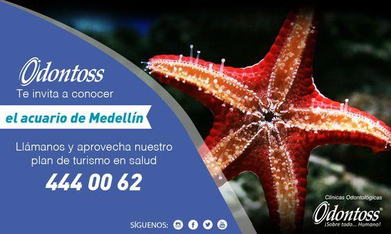 Contamos con un plan llamado Turismo en salud en el cual te ayudamos a venir a Colombia y realizar tu tratamiento odontológico con nosotros además de conocer hermosos lugares de la ciudad de Medellín. PBX: (+57) 444 00 62 whatsapp: 3122284241. www.odontoss.com