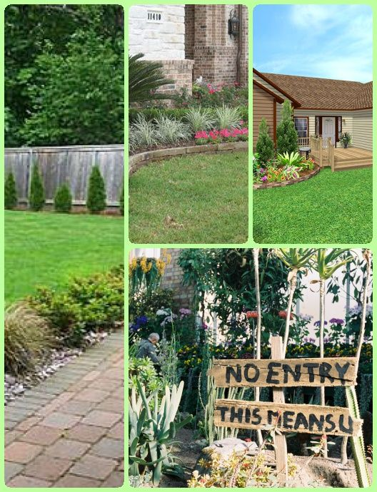 Pwp Landscape Architecture In 2020 Landscape Backyard Landscaping Landscape Architect