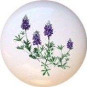 bluebonnet drawer pulls - Google Search.  amazon.com