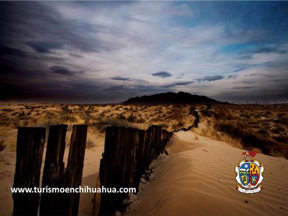 TURISMO EN CIUDAD JUÁREZ El nombre de Samalayuca proviene de unos arbustos llamados Agrillos, que están cubiertos por arena. Las mejores temporadas para visitar esta zona son otoño e invierno, debido a que en verano la temperatura se puede elevar hasta los 45 grados centígrados. No es recomendable adentrarse en las dunas sin un guía local. #turismoenchihuahua