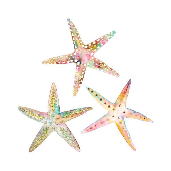 Starfish, Beaches and Etsy on Pinterest