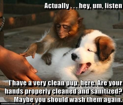 funny captions clean google search laughs pinterest