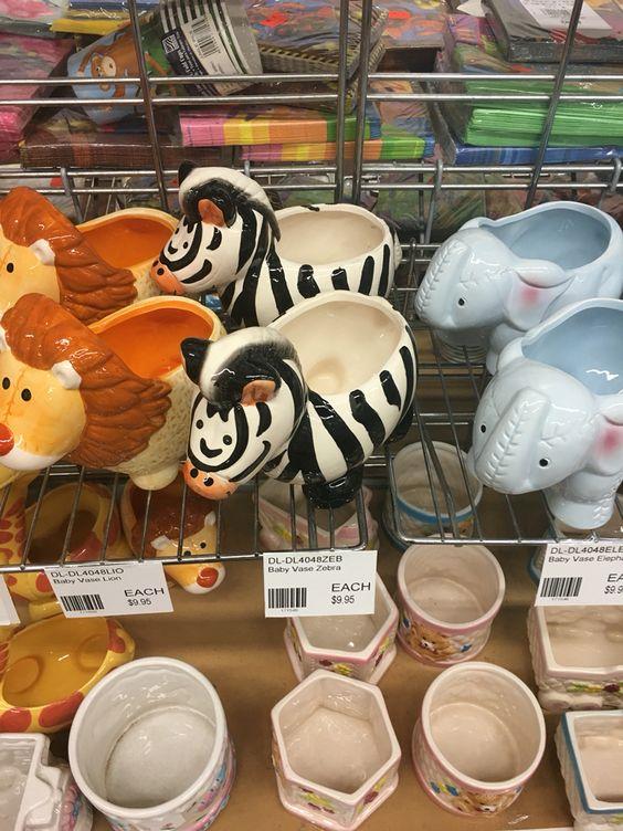 Want this zebra plant pot