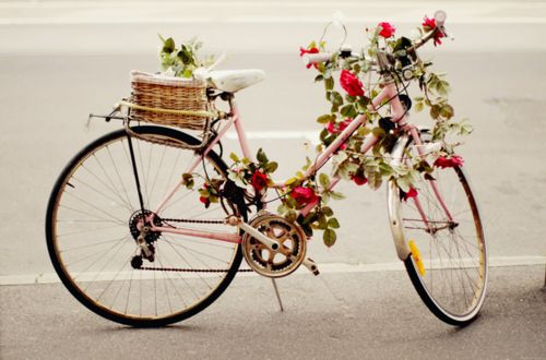 bikes and flowers, what's not to love
