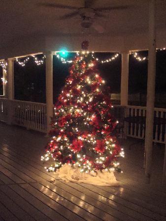 Wrap around porches and Christmas trees....lush