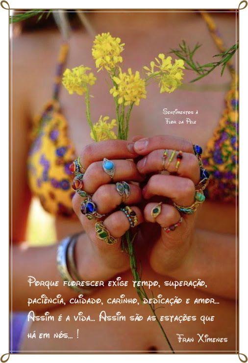 Sentimentos à flor da Pele ღઇઉღ - Google+