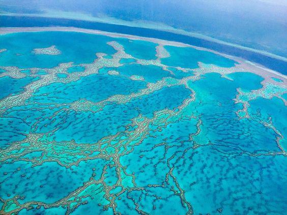 #worldslargeststructureoflivingorgabisms #sevennaturalwondersoftheworld #coralsea #australia #greatbarrierreef #march2016 by damiencrosse_official http://ift.tt/1UokkV2