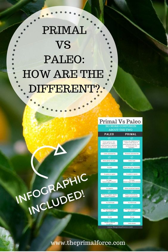 Do you know that Paleo is not the same as Primal? If you started your healthy eating journey lately, you may want to find out the difference. Click through to see the inforgraphic!
