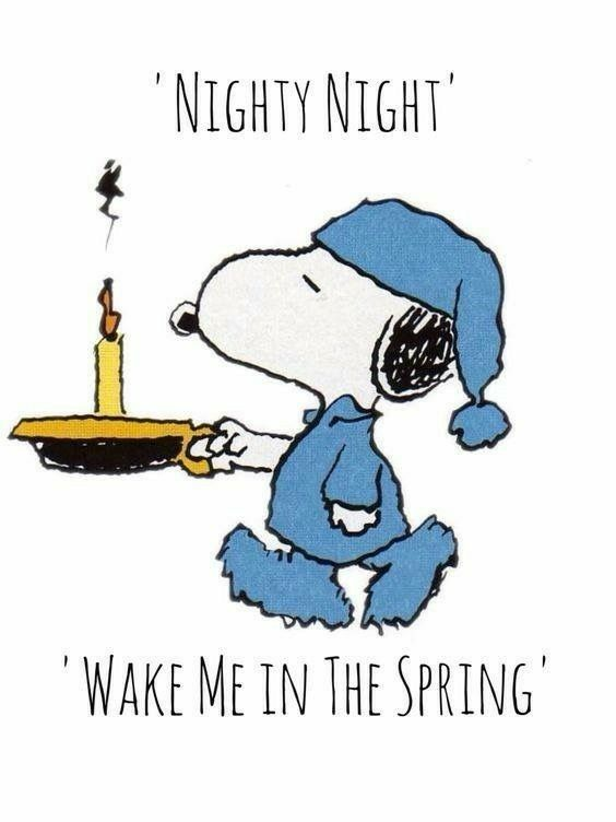 Wake Me In The Spring