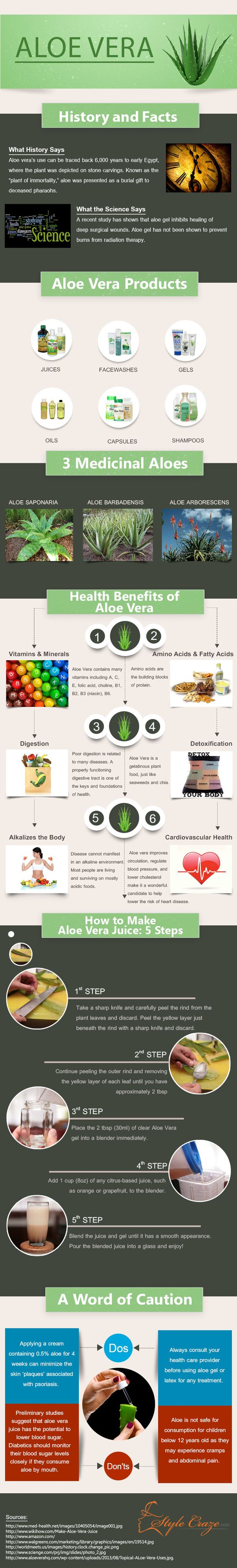 Aloe Vera health benefits + Juice recipe [Infographic] | ecogreenlove