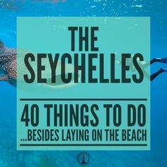 The ultimate list of things to do in the Seychelles this year...