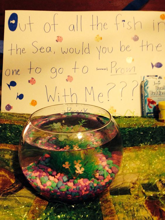 Proposals prom proposal and fish on pinterest