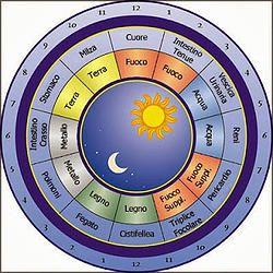 L'orologio circadiano nella Riflessologia Plantare