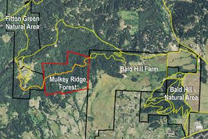 Connecting the Dots | Greenbelt Land Trust  | Exciting connection of Fitton Green Natuaral Area to Bald Hill Farm.