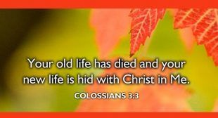 YOU ARE HID IN CHRIST