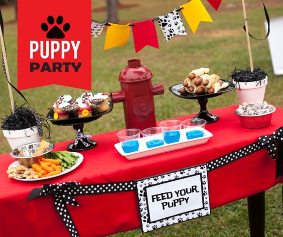 20 Easy Ideas For A Puppy Party On A Budget Birthdays