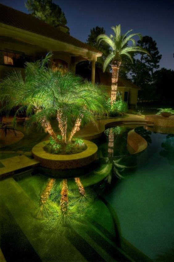 bccac692e4a6f0cda6cc442d17878444 Palm Tree Outdoor Landscape Lighting Ideas on palm tree outdoor pendant lighting, pine tree landscape lighting, outdoor led landscape lighting, palm tree landscape lighting design, crown led rope lighting,