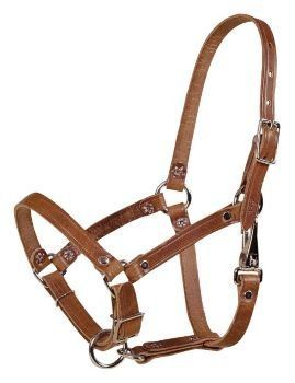 Tory Safety Rivet Foal Leather Halter with Snap by Tory Leather. $15.29. Tory Leather Safety Rivet Foal Halter with Snap Leather foal halter with rivet construction, throat snap, and adjustable nose. Color: Brown Size: Newborn Foal 100-200lbs