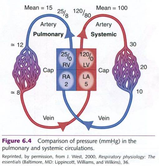 Alzheimers disease typefile pct